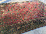 Antique Indian Tabriz Oriental Carpet 10'x 13'9""