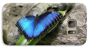 Blue Butterfly  - Phone Case