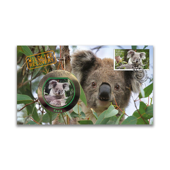 Wildlife Recovery - Koala PMC