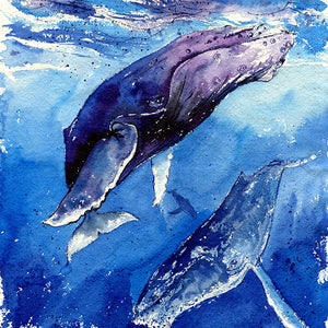 """The Trifecta"" Humpback Whales Original Watercolor Painting"