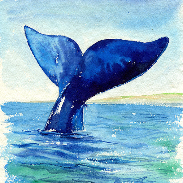 """Aloha"" Humpback Whale Tail Original Watercolour Painting"