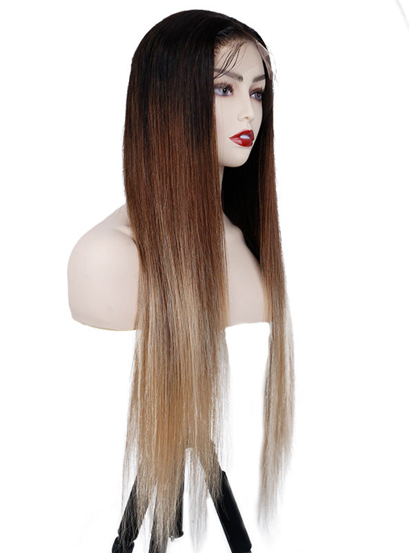 Preplucked Glueless HD Lace Lace Front Ombre Color Silky Straight Wig CLW01