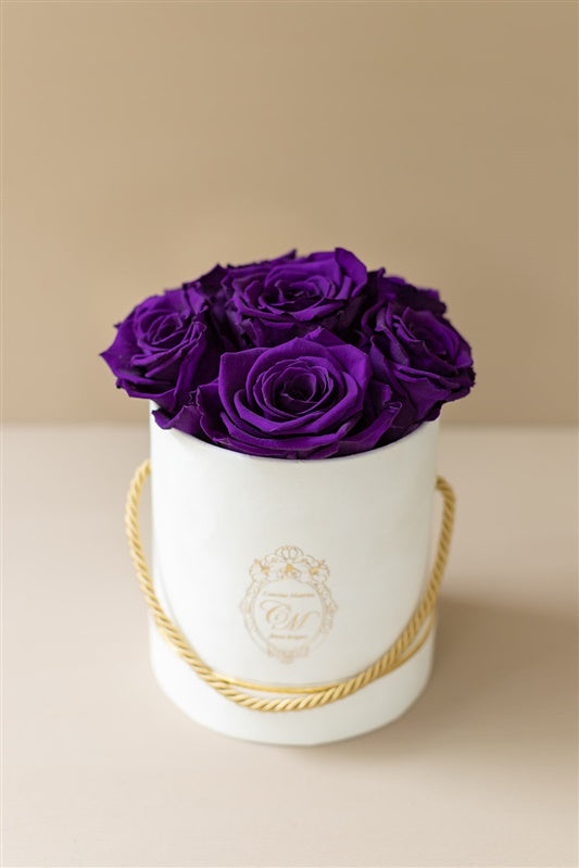 The White Gold Collection - Roses Purple