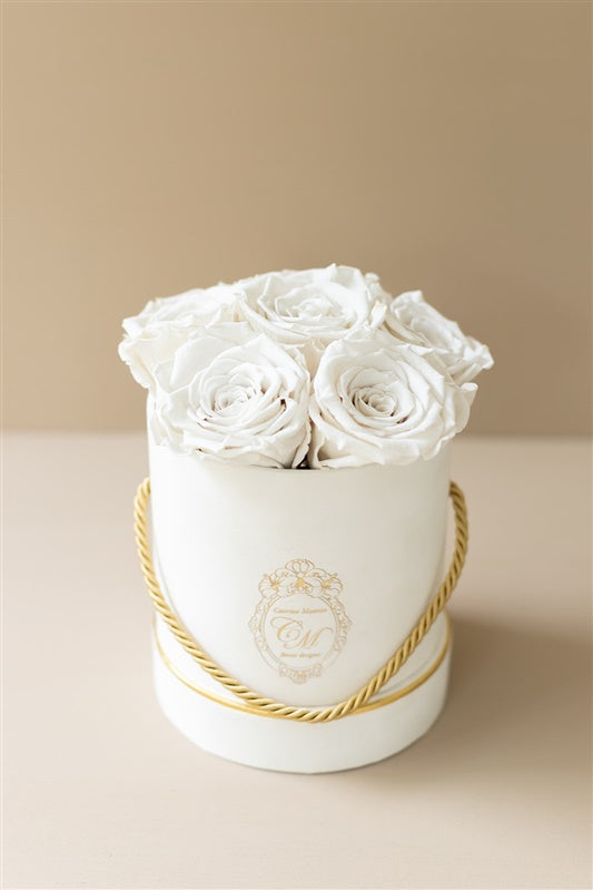 The White Gold Collection - Roses White