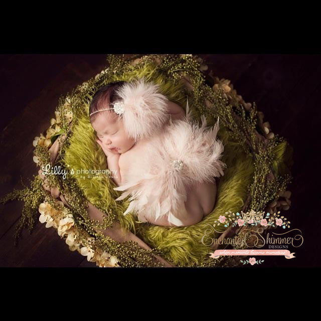 Newborn Angel Wings - Champagne