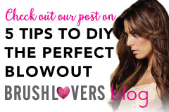 Visit the BrushLover's Blog!