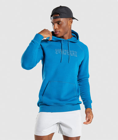 Shop Gymshark Outline Hoodie - Teal From GS | AROS
