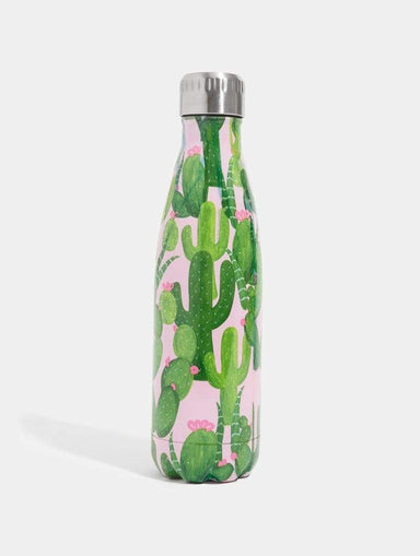 Shop Cactus Water Bottle 500ml From SDL | AROS