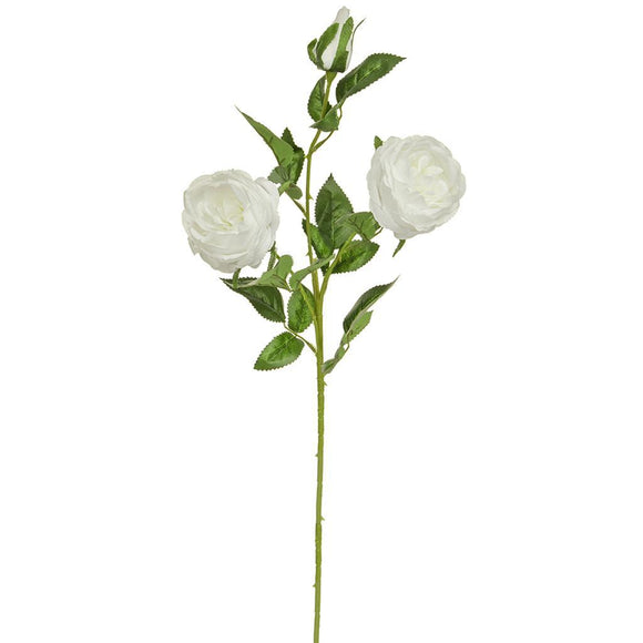 SF Rose Double White W 84cm