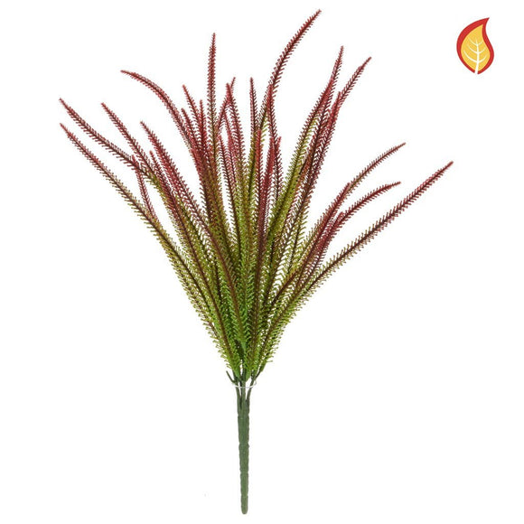 Grass Red Tipped FY 40cm FR