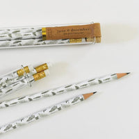 Fern Pencil Terrarium: Set of 5 Pencils