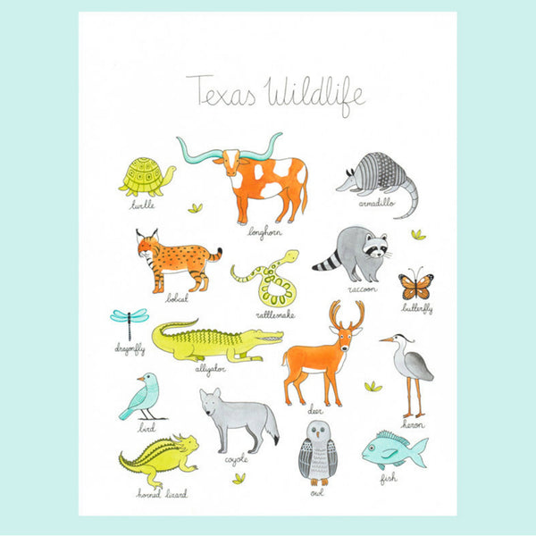 Texas Wildlife Art Print