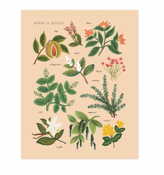 Herbs & Spices Peach Print