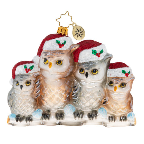 Christopher Radko It's Owl In The Family Ornament