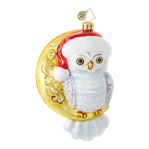 Radko Owl HOOO KNEW? Who Christmas Ornament  New RETIRED