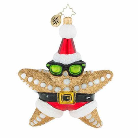 Christopher Radko Who's The Star Now! Starfish Beach Ornament