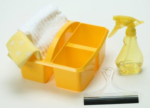Window & Mirror Washing Kit (C) Item# P9876K