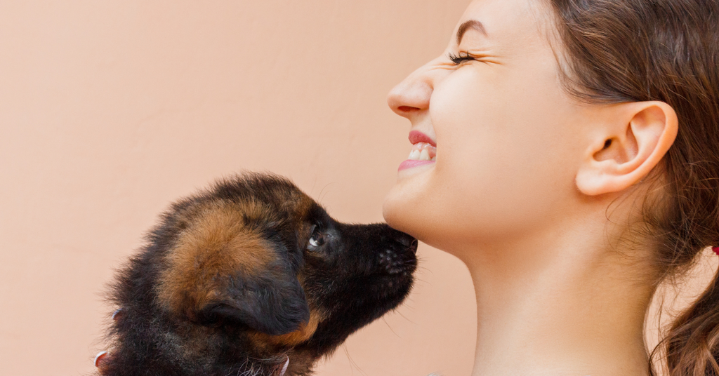 Puppy with woman
