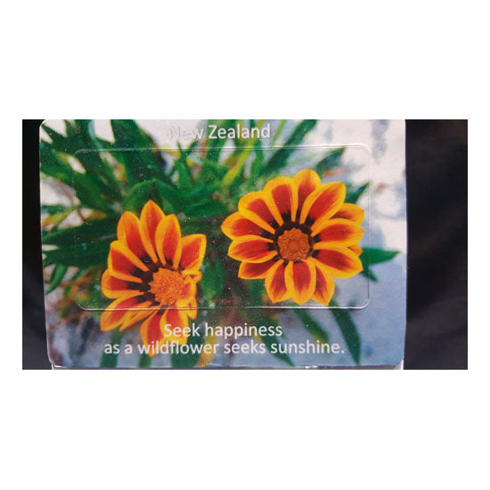 NZ Yellow/Orange Wildflower Fridge Magnets