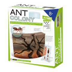 Jeanny Create Your Own Ant Colony