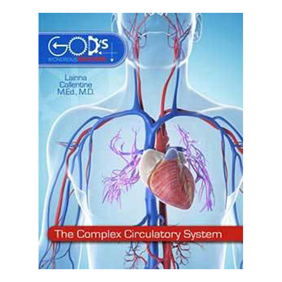 Bk:The Complex Circulatory System