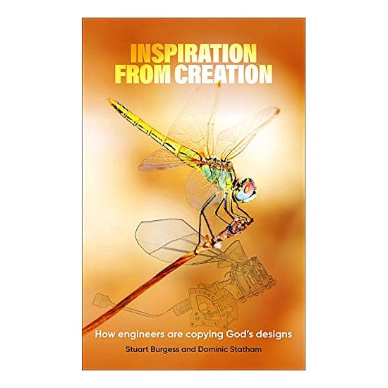 Bk: Inspiration from Creation
