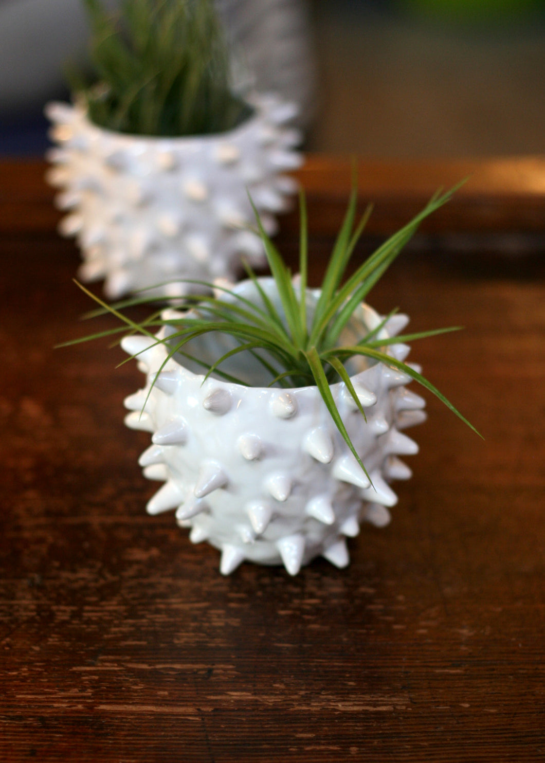 ceramic pokey planter