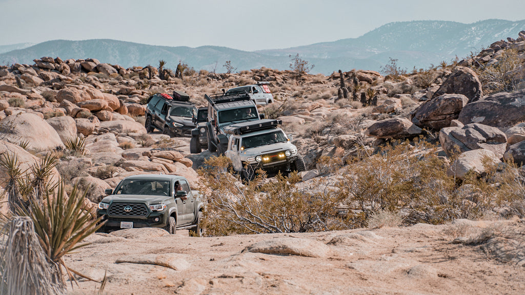 The Part-Time Crawlers Group In Cougar Buttes