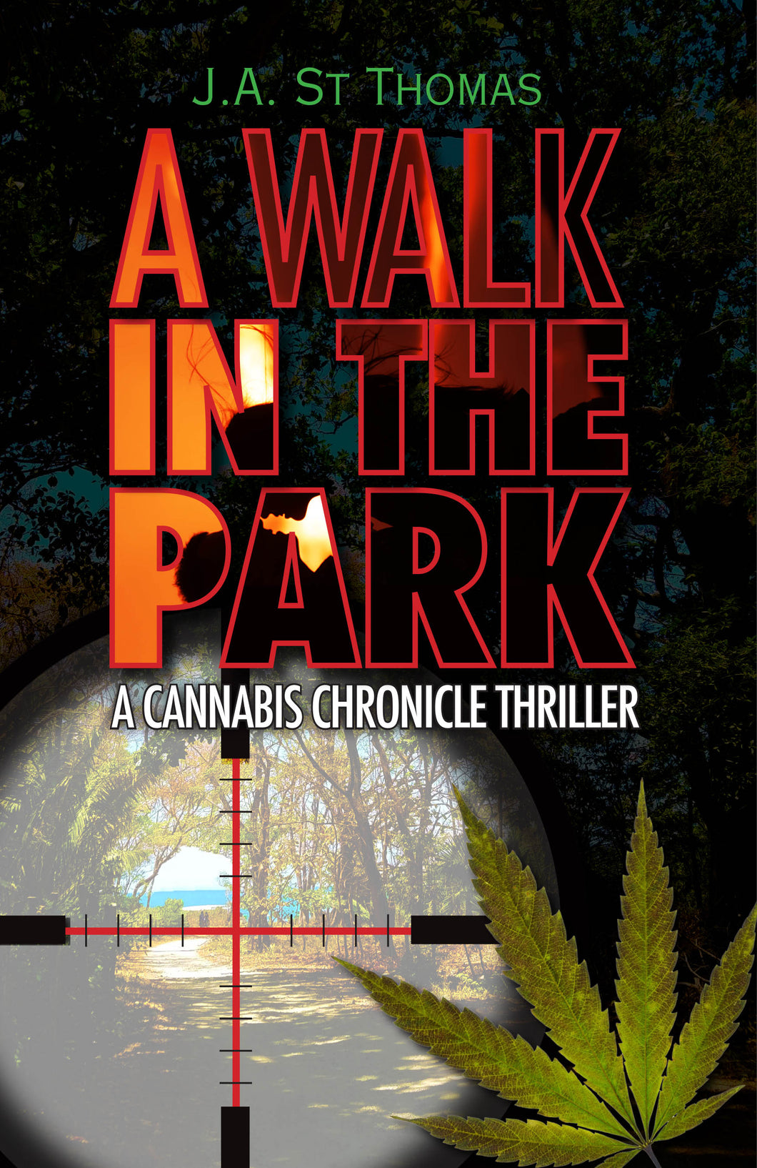 A Walk in The Park a cannabis chronicle thriller- Paperback