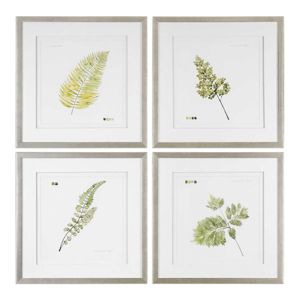 Uttermost Watercolor Leaf Study Prints