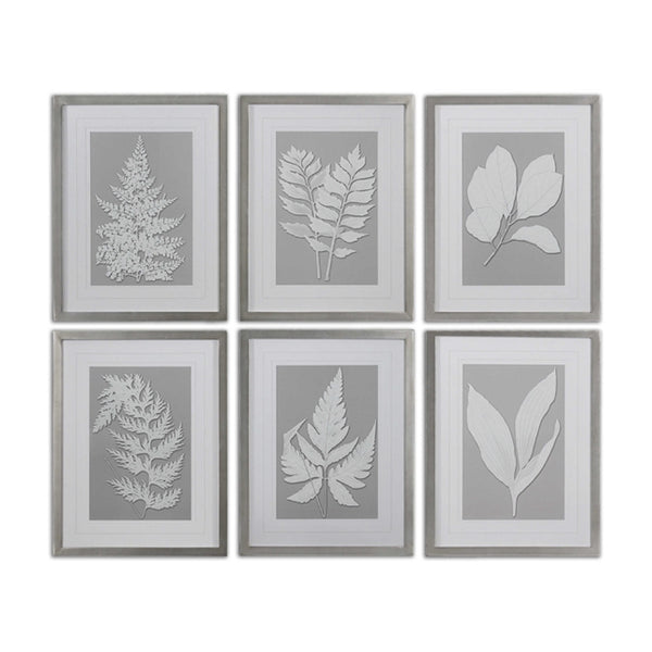 Moonlight Ferns Framed Prints