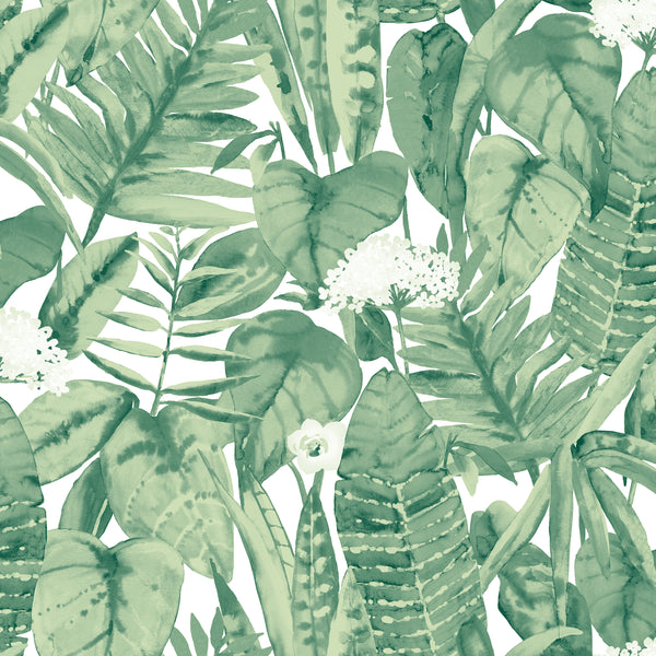 Tropical Jungle Tree Wallpaper by Tempaper