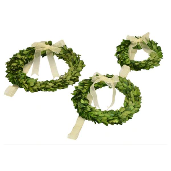 Preserved Boxwood Wreath - Round with Ribbon