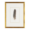 Feather Number Three Framed Art