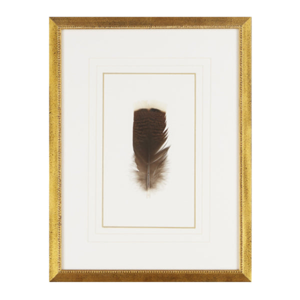 Feather Number Four Framed Art