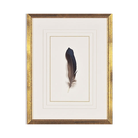 Feather Number Seven Framed Art