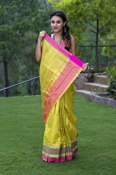 Light Green Pure Kota Cotton Saree With Pink Borders