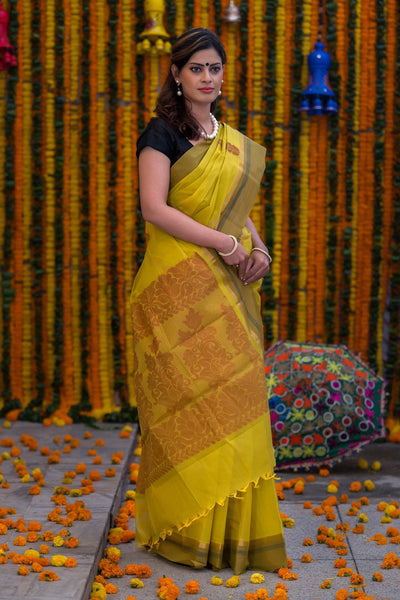 Corn Yellow Pure South Cotton Handloom Kovai Cora Saree