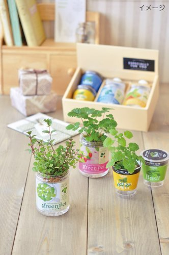 Herb Gift Growing kit - Relax Set