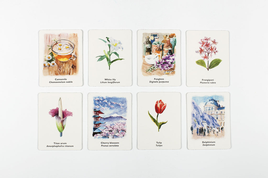 Pick a Flower | Laurence King | Matching & Memory Game