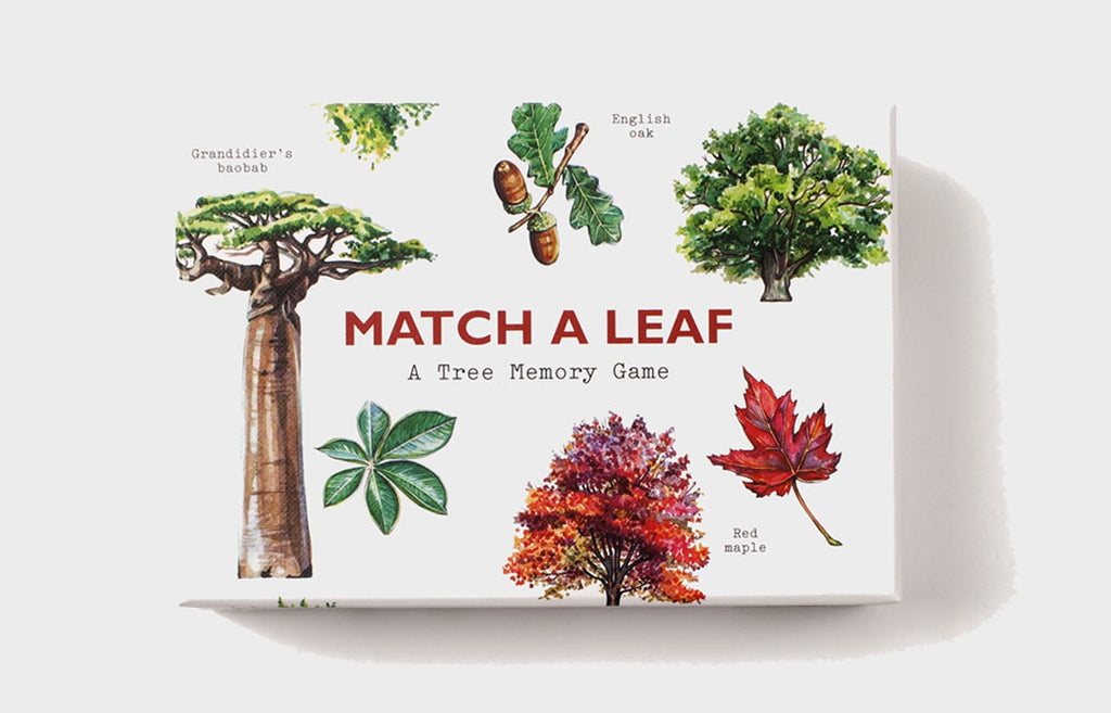 Match A Leaf | Laurence Kings | Matching & Memory Game