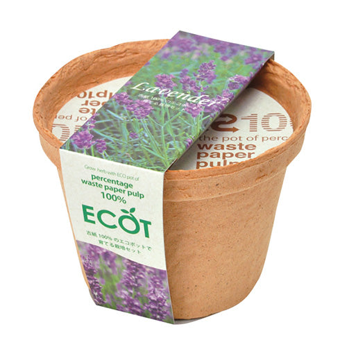 ECOT | Seishin Tougei | Herb Growing Kit