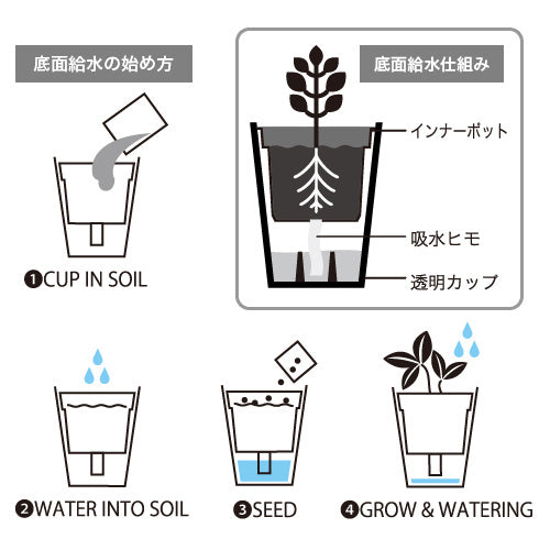 Fresh Herb | Seishin Tougei | Self Watering Kit