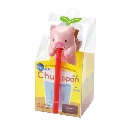 Chuppon Cultivation Kit