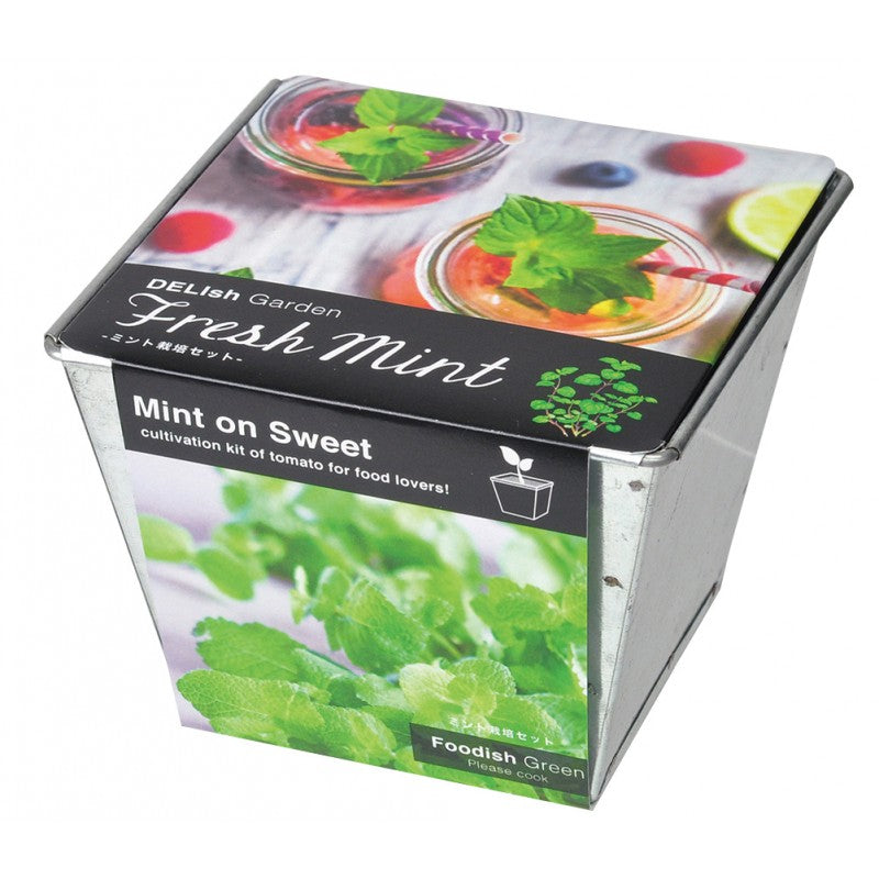DELISH GARDEN | Seishin Tougei | Herbs Growing Kit