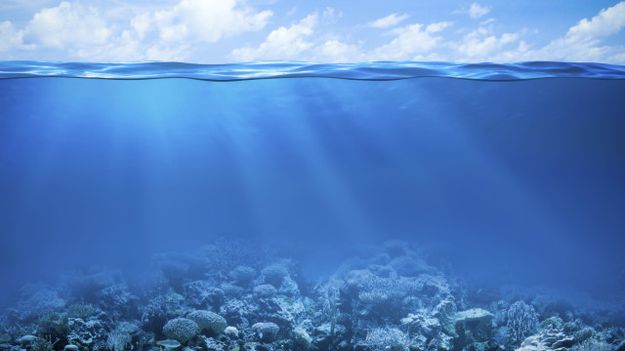 Humans cannot stay a few minutes underwater without assistive devices