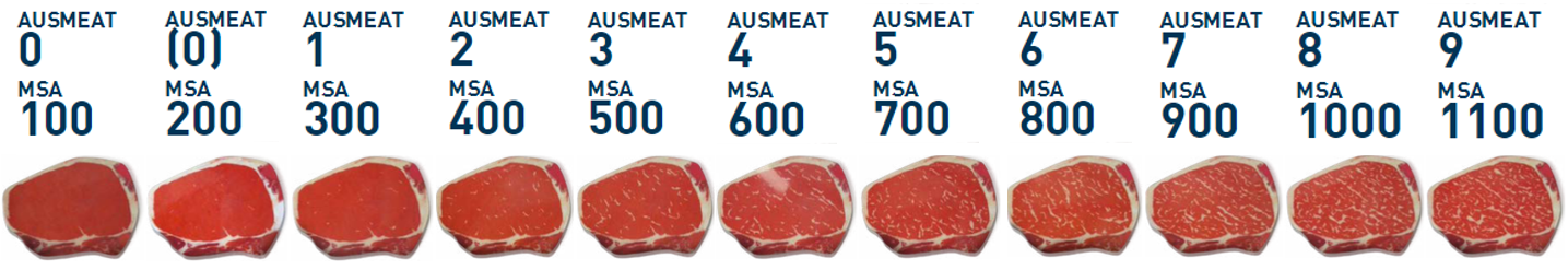 Guuuu | Marbling patterns to determine AUS-MEAT and MSA grades