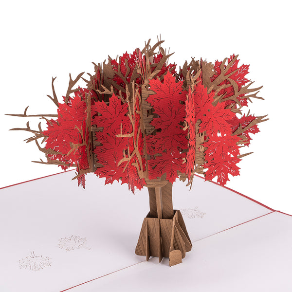Red Maple Tree Pop Up Card