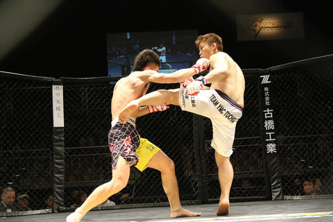 mixed martial arts fighting