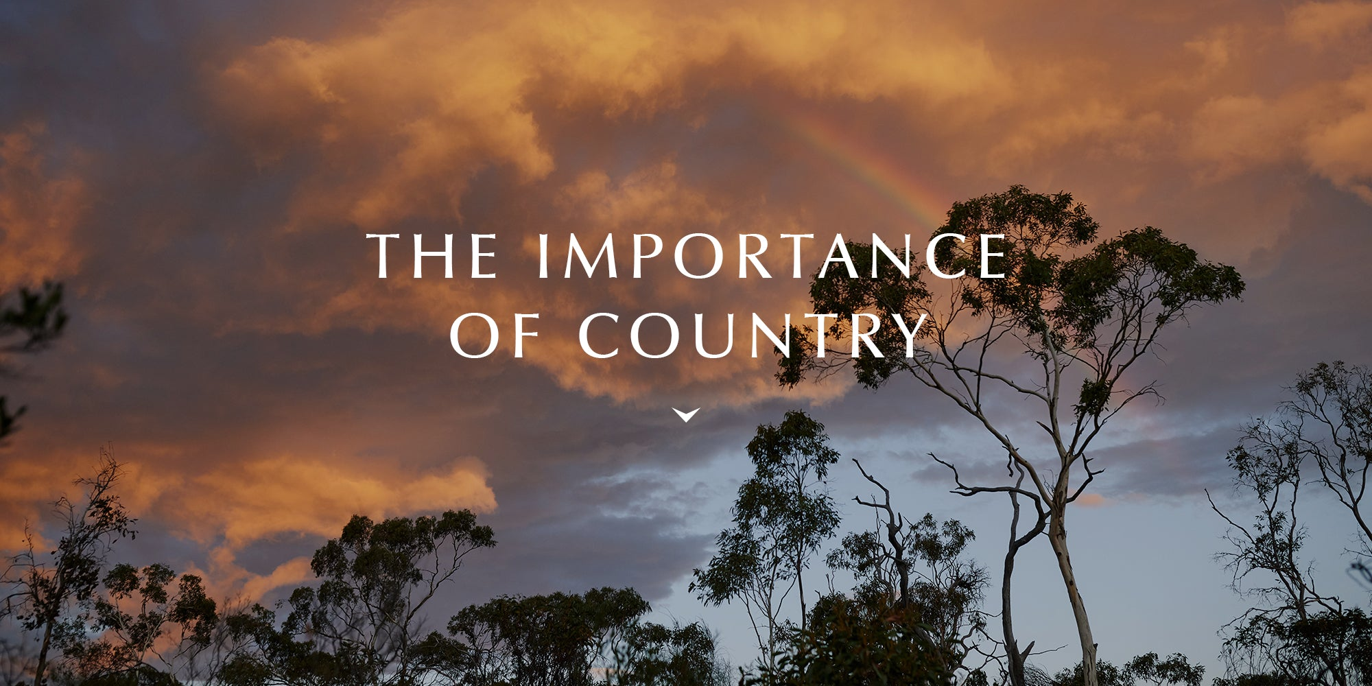 The Importance of Country
